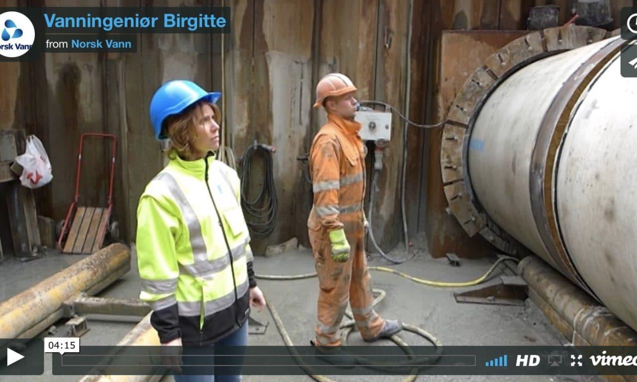 Vanningeniør Birgitte